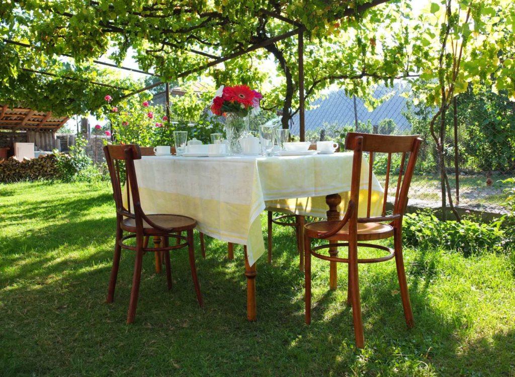 Dining Under Grapevines in Garden 1